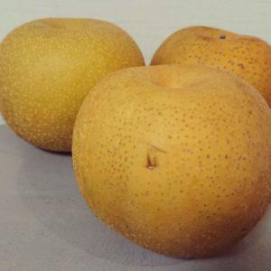 果物 フルーツ 梨