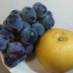 巨峰 梨 フルーツ