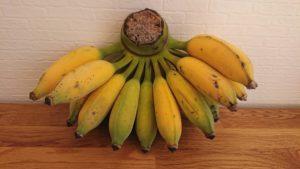 バナナ,国産バナナ,沖縄産バナナ