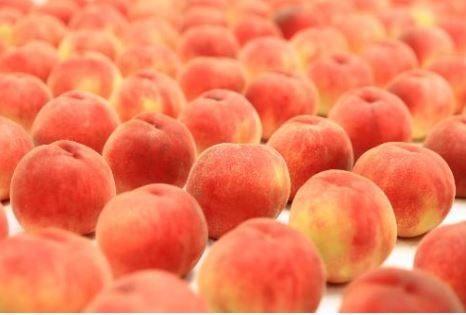 桃,桃ジュース,ピーチ